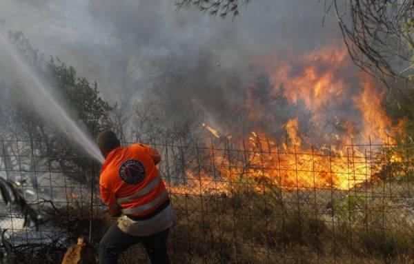 2012. će Srbija pamtiti po brojnim požarima