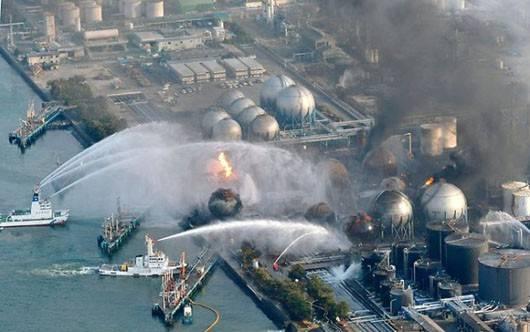 katarsofa u Fukusimi 2