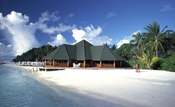 Maldivi 8