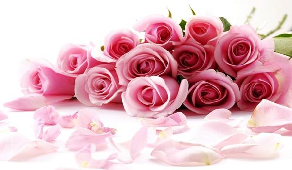 saljive sms poruke za Dan zaljubljenih