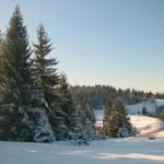skijanje na zlataru111