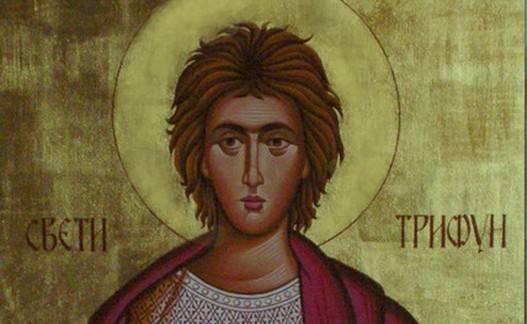 sveti trifun 34