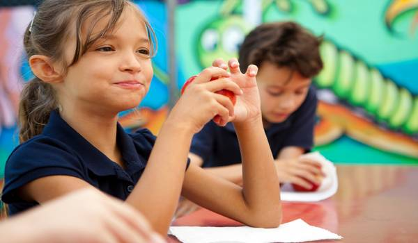 Sastavljanje jelovnika za skolsku decu