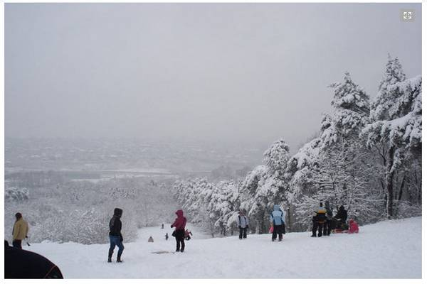 Ski staza na Košutnjaku