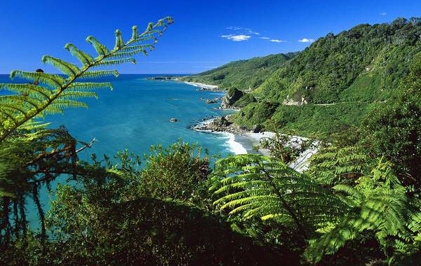 Prioroda na Novom Zelandu