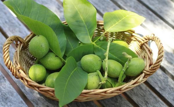 Rakija od zelenih oraha