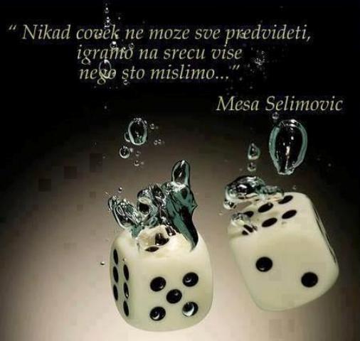 Citati i izreke - Mehmed Meša Selimović