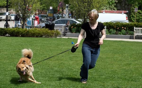 pas hoda na povocu uz nogu