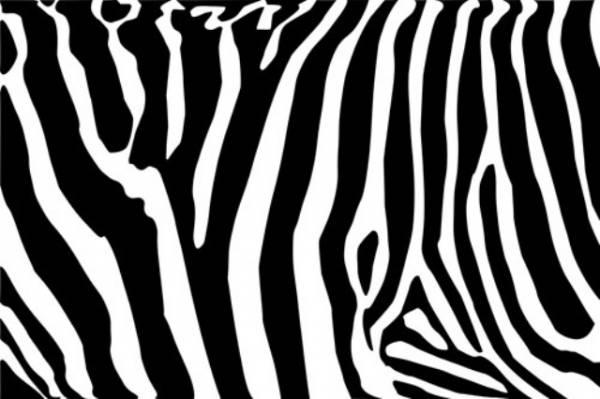 Crna i bela ne spadaju u boje.