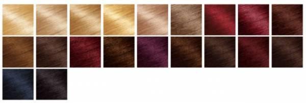 Omiljene boje Garnierovih farbi za kosu su:  ledeno plava, boja meda, smedje nijanse, pepeljasto plava, svetlo smedja, zlatno plava, crvena...