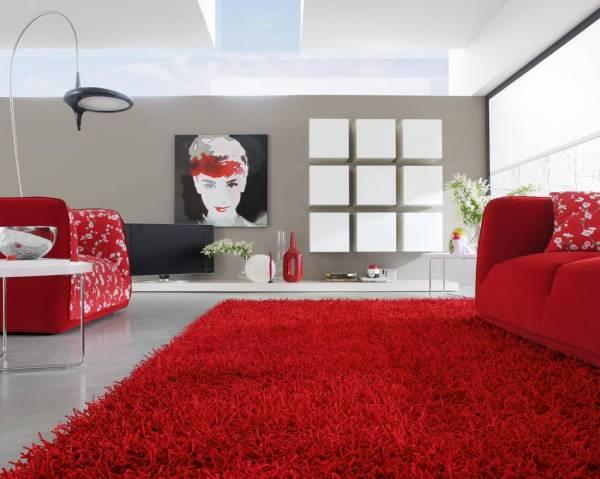 tepih dnevna soba1