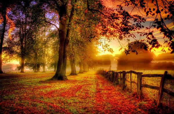 Sastav o jeseni