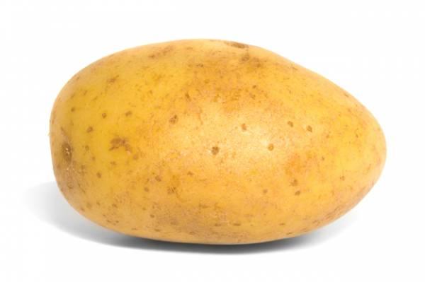 bradavice krompir