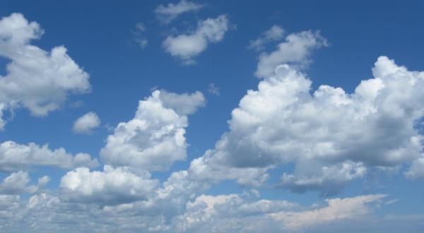Oblak u pantalonama