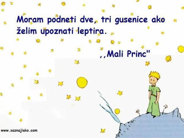 U Malon Princu naćićete puno prelepih citata o životu, prijateljstvu, ljubavi...