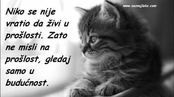 Dostojevski - citati o životu