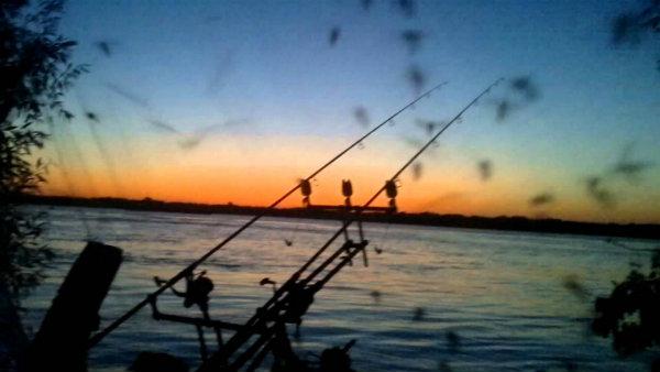 pecanje na Dunavu
